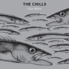 The Chills – silver bullets